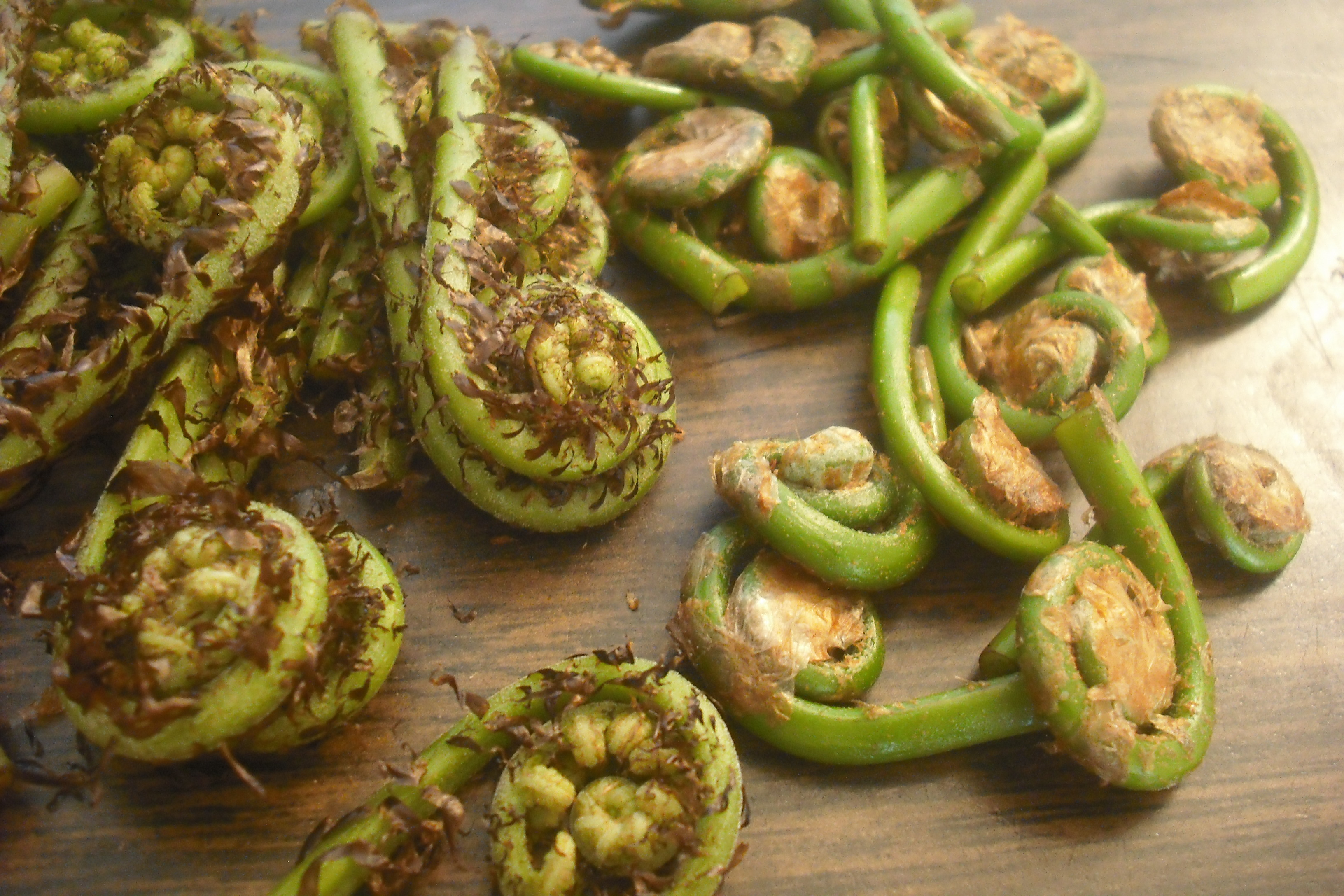 how to cook fiddleheads ferns