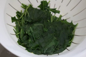 cooked chicory