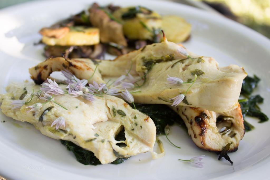 Chicken, chicory, and mushrooms