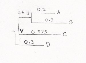 The first phylogentetic tree exercise was simple - well, ok, not simple, but small enough matrices to draw by hand.