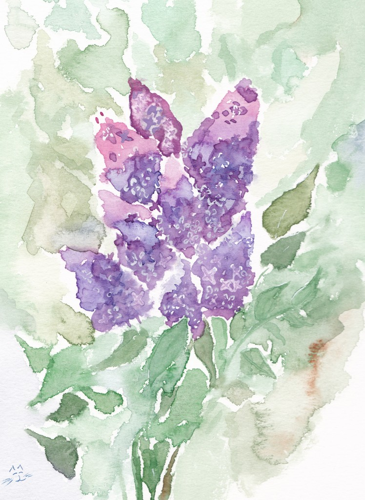 Day 110: LIlacs. Watercolor on 140 lb paper.
