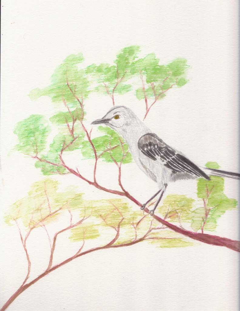 Day 90: Mockingbird