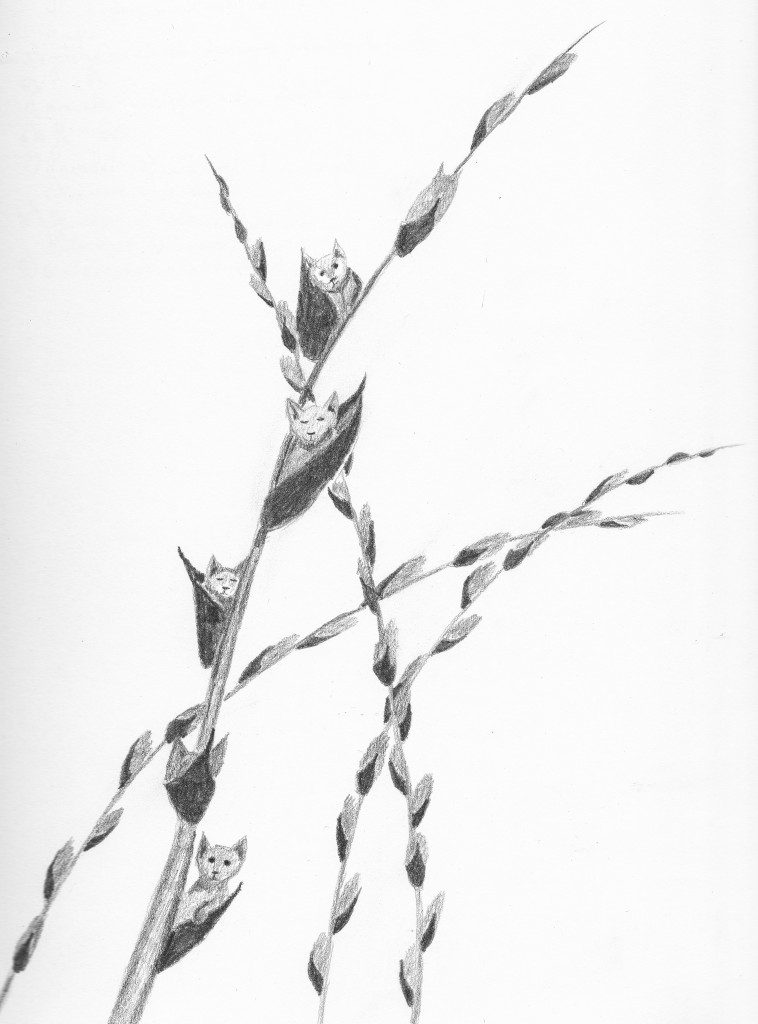 Day 73: Pussywillow (the original art of this is sold)