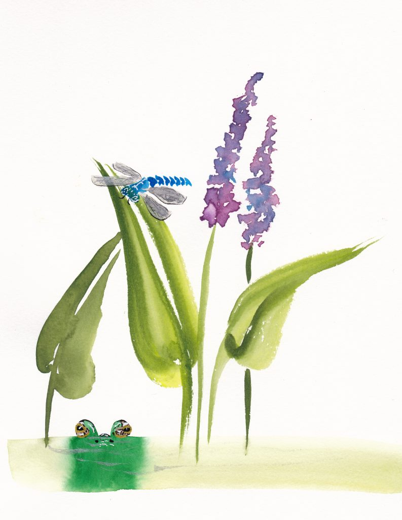 Pickerelweed, watercolor in Chinese Brush style. On 7x10 paper