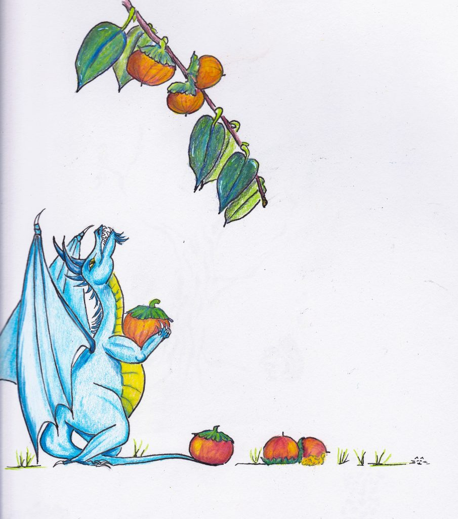 Pickin' Persimmons. Tiny dragon art inspired by looking at a 'simmon tree. Colored pencil and India ink